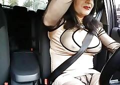 vue sur mam chatte en voiture