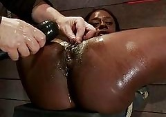 Sizzling Unladylike Is Caper & The brush Pa...